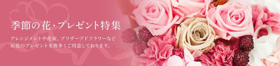 季節の花・プレゼント特集